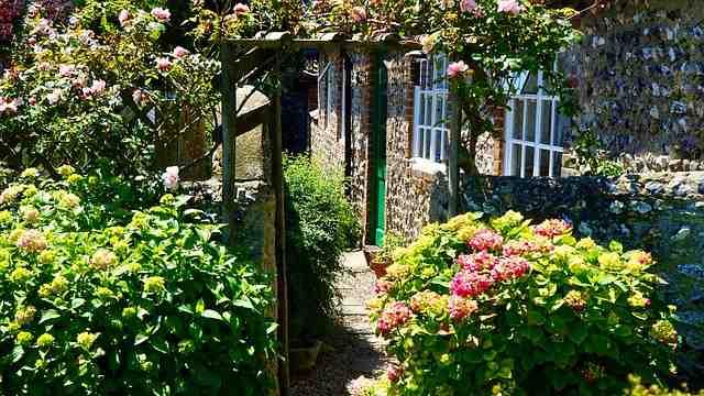 Quelles plantes mettre dans le jardin fleuri?